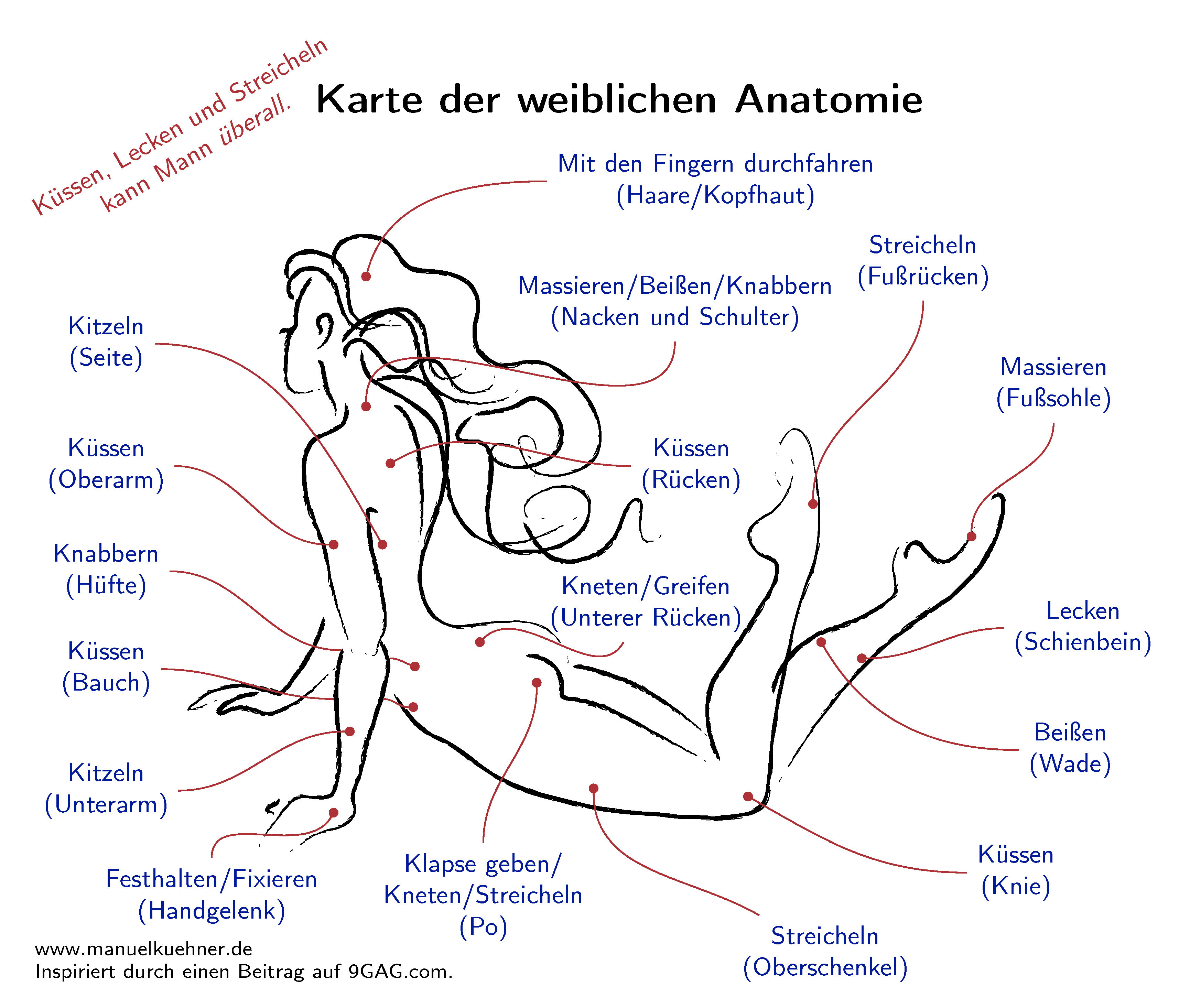 femaleanatomy_deutsch